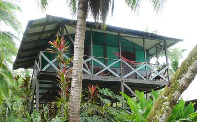 Amaya Family Cabins